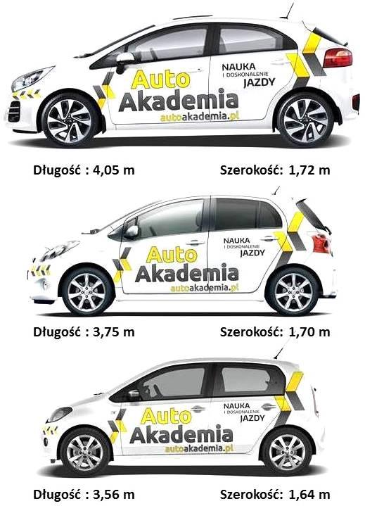egzamin-mord-samochody