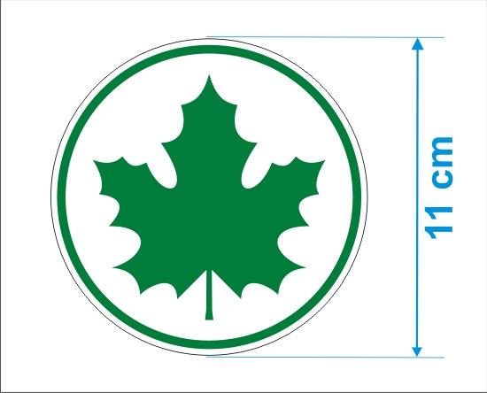 zielony-listek-wymiary