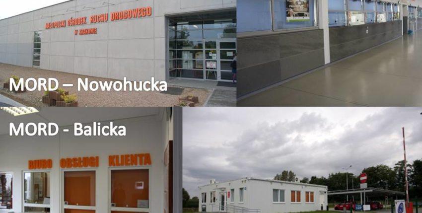 Balicka vs Koszykarska